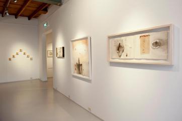 Alicia Winters Gallery