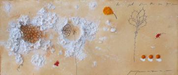 La pell d'una flor que punxa